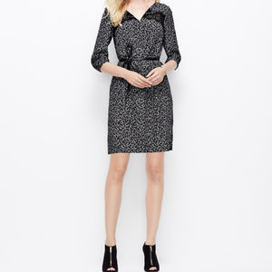 LAST CHANCE! Ann Taylor Lace Confetti Shift Dress